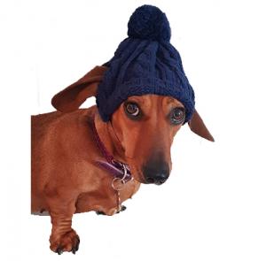 Annie The Duffy Dog